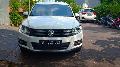 2013 Volkswagen Tiguan TSI - istimewa (s-5)