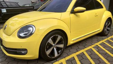 2014 Volkswagen Beetle 1.4 - mulus terawat, kondisi OK