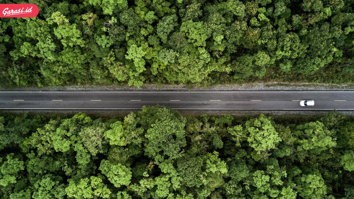 Berencana Melakukan Liburan Dengan Mobil? Ini 5 Tips Aman Melakukan Road Trip