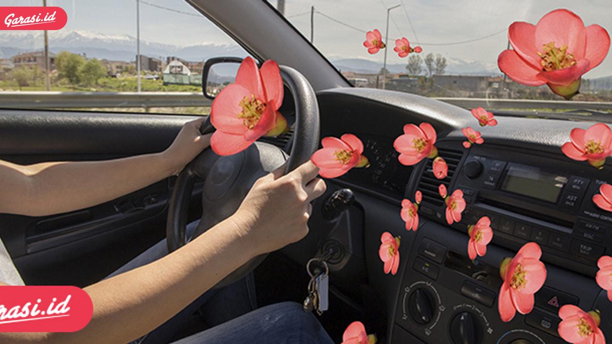 Wow! 5 Bahan Alami Ini Ampuh Sebagai Pengharum Mobil