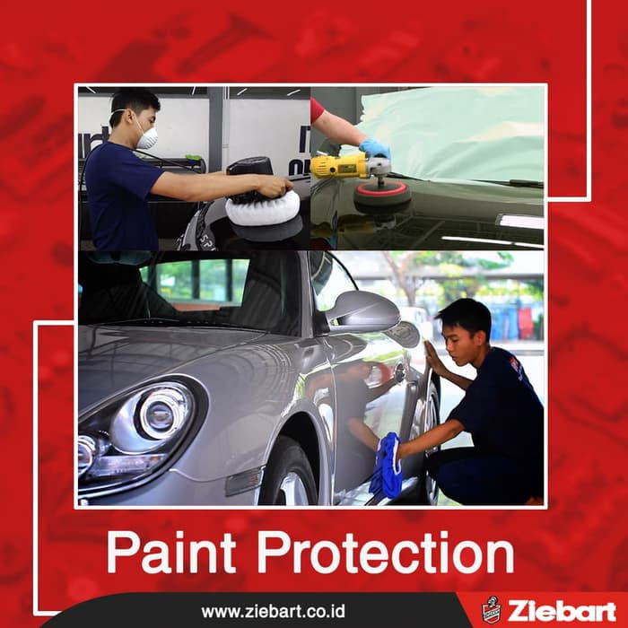 Ziebart Paint Protection