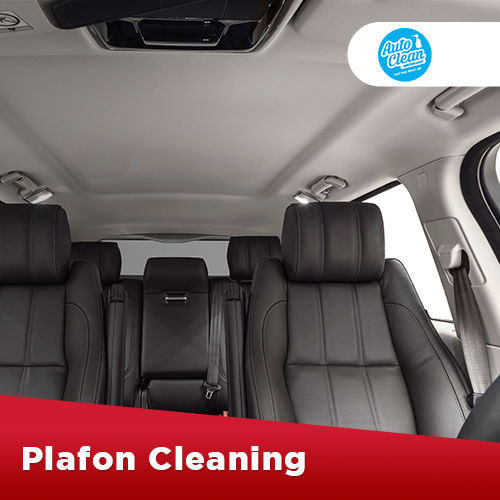 Plafon Cleaning