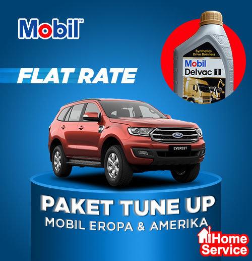 Flat Price - Ganti Oli + Tune Up Mobil Diesel [Oli Mobil Delvac1  5W-40]