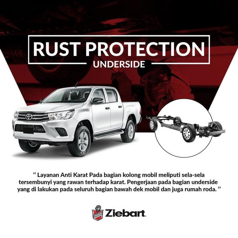 Ziebart Rust Protection (Underside)