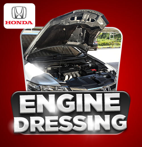 Engine Dressing (All Type Honda)