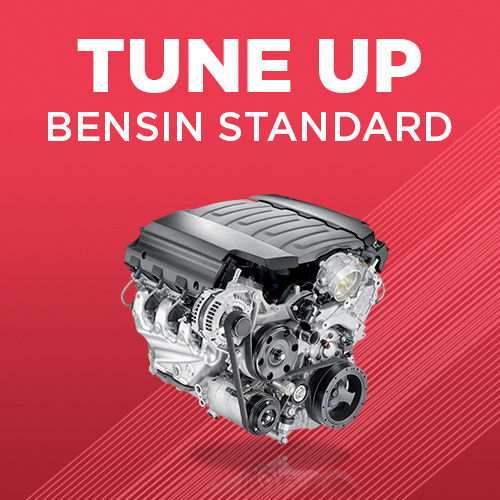 Tune-up Bensin Standard