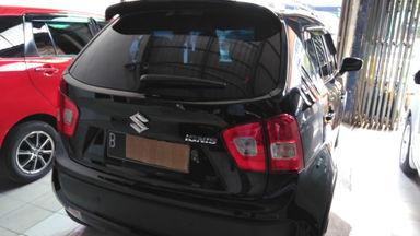 2017 Suzuki Ignis gx - Warna Favorit, Harga Terjangkau (s-3)