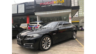 2015 BMW 5 Series Luxury