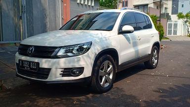 2013 Volkswagen Tiguan TSI - istimewa (s-8)