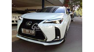 2019 Lexus RX UX200 F