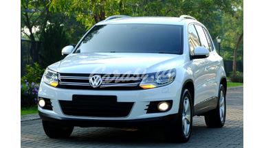 2013 Volkswagen Tiguan TSI