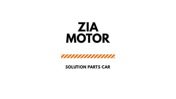 Zia Motor