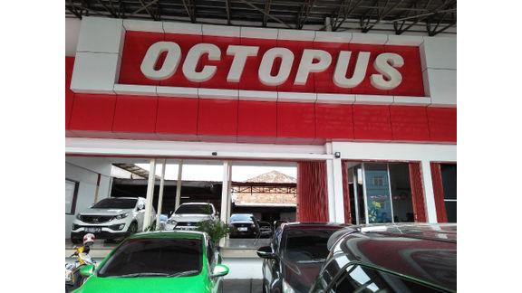 Octopus Motor