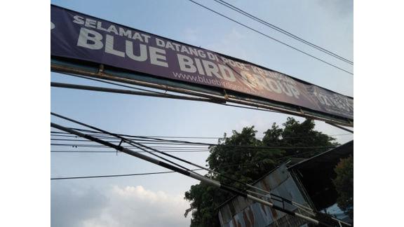 Blue Bird Krangan